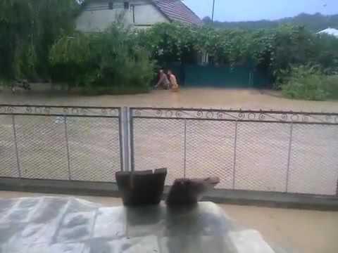 Появилось видео затопленного села в Закарпатье. Новости сегодня 28.06.2016
