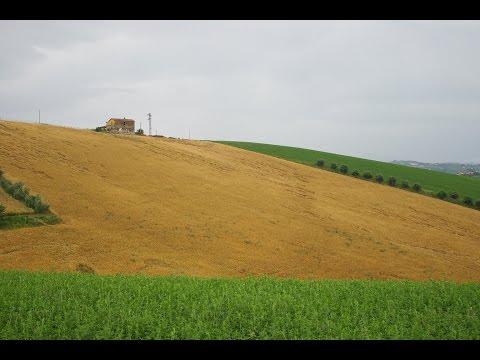 Casale da ristrutturare situato in una stupenda zona panoramica – Atri, Abruzzo