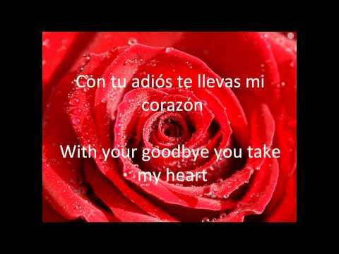 Como La Flor Like The Flower Lyrics