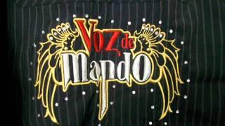 VOZ DE MANDO    -----     500 BALAZOS
