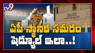 AP High Court green signal for local body elections - TV9