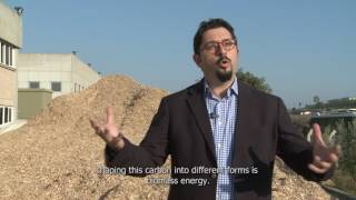 Renewable Energy and Environmental Technologies Financial Support Programme (Long Version)