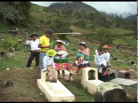 PRINCESITA DE PAUCARBAMBA - Inkil  morada  ( Santiago )