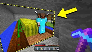 i found my way into this new Minecraft farm base & decided to go invisible to troll the owners (LOL)