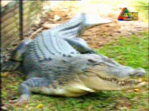 Atn Bangla- Matir Subash video