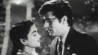 O Mr Benjo - Shammi Kapoor, Nalini Jaywant,  Hum Sab Chor Hain Song (Duet)