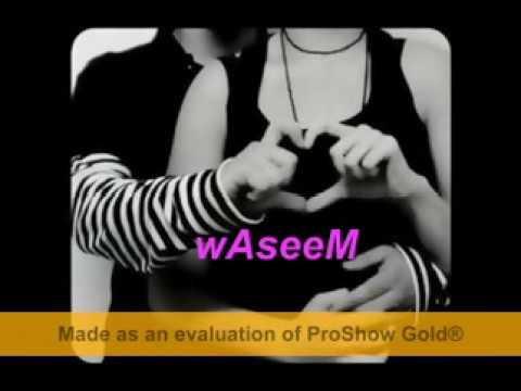 waseem al najjar / mohammad fo2ad / hane shaker