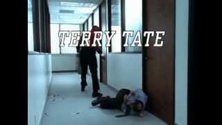 Terry Tate - Office Linebacker