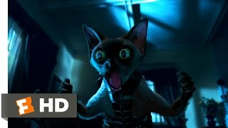 Cats & Dogs (3/10) Movie CLIP - Ninja Cats (2001) HD