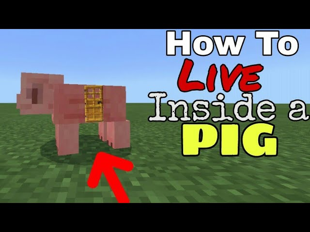 How To Live Inside A Pig - Minecraft PE Command Blocks Creation!