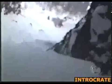 Yeti filmed in Himalaya