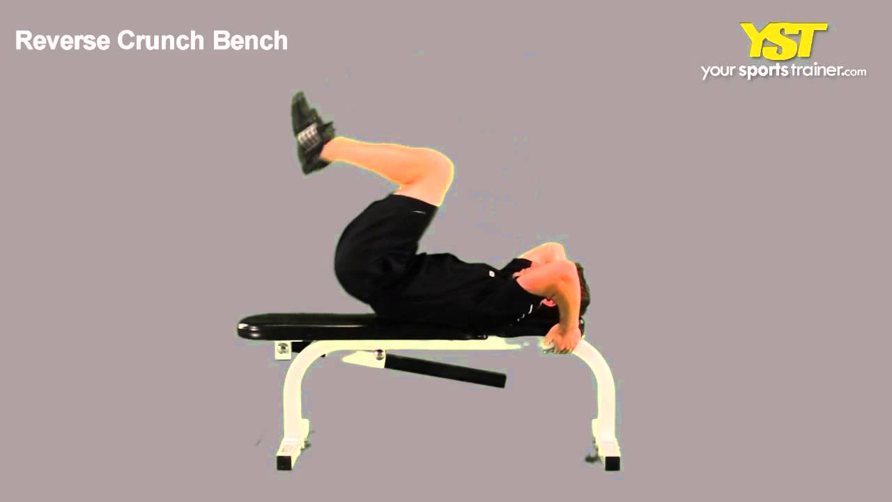 53 Bench Press Program Increase Your Strength With This
