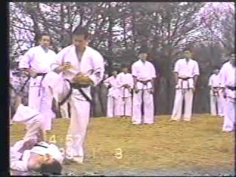 Okinawa Shorin ryu Karate