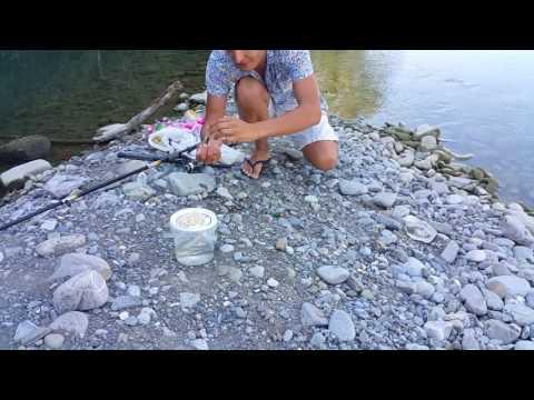 рыбалка в саках с берега