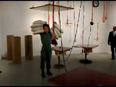 Aki Sasamoto:  Strange Attractors  at the Whitney Biennial 2010