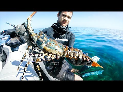 Download Lagu  I QUIT MY FULL TIME JOB FOR YOUTUBE   Camping Catch And Cook Giant Crayfish Damper - Ep 67 Mp3 Free