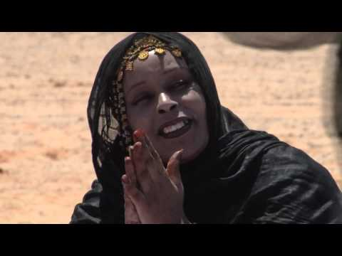 The Sahara Desert and Its Cultures