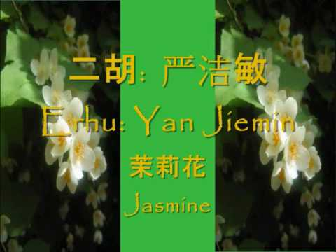 Chinese Music, Jasmine Flower (茉莉花), Erhu (二胡), Yan Jiemin (严洁敏) video