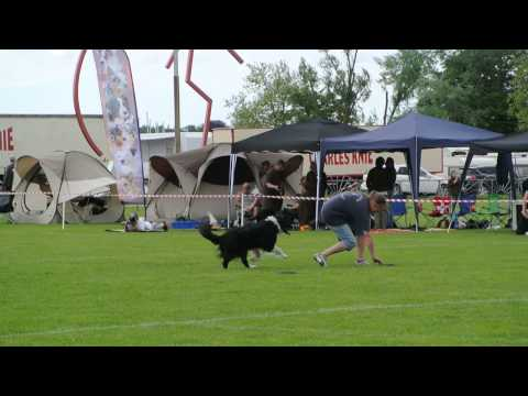 UFO Major Sandreas-Cup III - Conny Sawicki with Quigley - Freestyle 2