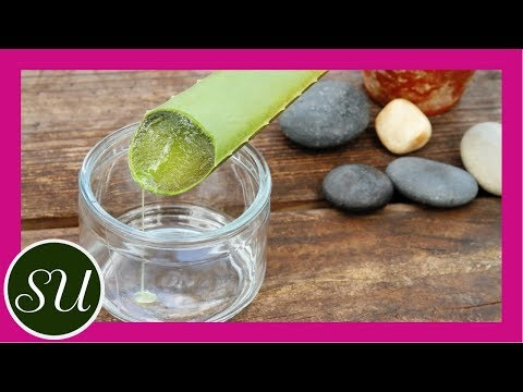 Natural Remedies : 5 Uses for Aloe Vera Juice : Do It Gorgeously Green