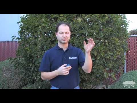 How to Use Moon Filters - Orion Telescopes and Binoculars