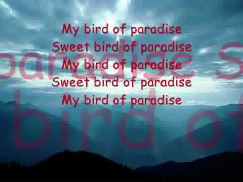Snowy White - Bird Of Paradise With Lyrics video