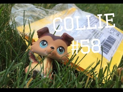 Opening Lps Collie #58 From eBay