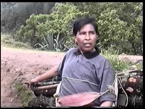 Pobreza en Guatemala, documental