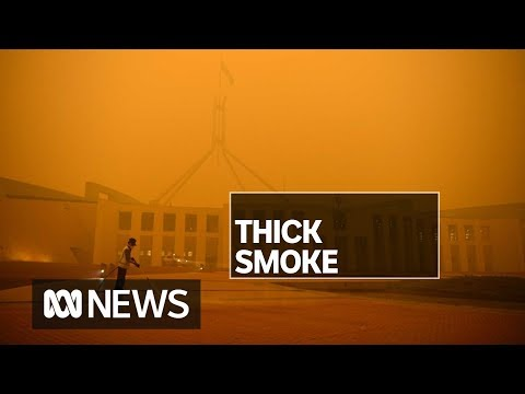 NSW fires blanket Canberra in thick smoke, leading to orange skies and poor air quality | ABC News