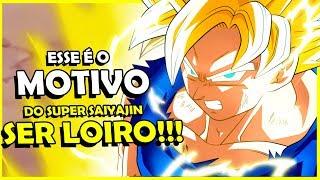 FINALMENTE REVELADO PORQUE O SUPER SAIYAJIN É LOIRO!