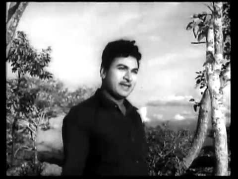 Manna Dey's Kannada Song Kannillaveno video