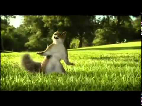 Nestle Kit Kat Squirrel Ad Aug 2010 Break Banta Hai   Flv video