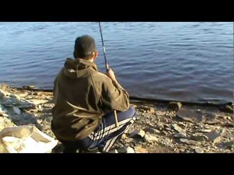 видео рыбалка на средней волге видео