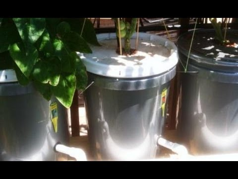 Build 5gal Hydroponic Bucket