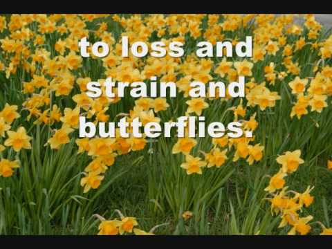 Matchbox 20 - Loss, Strain & Butterflies
