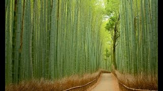 Unbelievable Places that are Hard to Believe Really Exist HD 2014 HD
