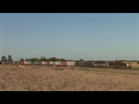 Pota Rice Train Near Rochester.  Mon 30 12 11 video