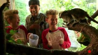 Marcus & Martinus In The Zoo w//Omer