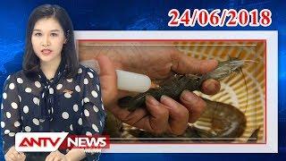 Tin nhanh 9h mới nhất ngày 24/06/2018 | Tin tức | Tin tức mới nhất | ANTV
