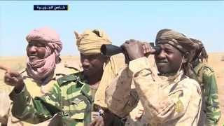 الجيش التشادي يسير دوريات لمواجهة بوكو حرام