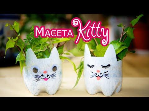 Maceta PET Kitty Dormida y Despierta de Mesa y Colgante