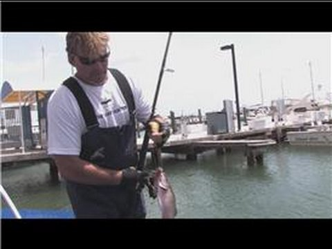 Saltwater Fishing : Saltwater Pier Fishing Techniques