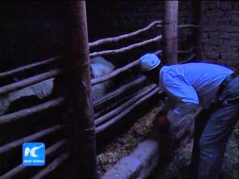 Xinjiang farmer observes Ramadan