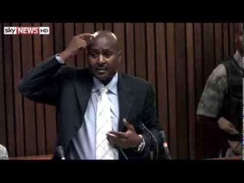 Ballistics Expert Describes Reeva's 'Defensive Position': Day Thirteen Of Pistorius Trial