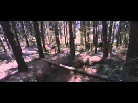 Maattrraan 2012 Tamil Full Movie Part Clip14 video