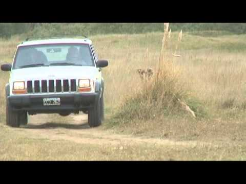 Victoria Off Road - 4x4 Travel Guide & Solutions - Argentina & Chile Driving