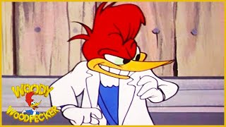 Woody Woodpecker classic   What's Sweepin'   Woody Woodpecker Full Episode   Videos for Kids