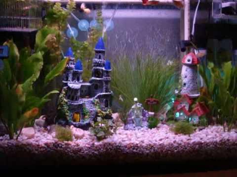 Pecera hanner acuario de agua dulce peces tropicales 80 l for Peces para peceras pequenas agua fria