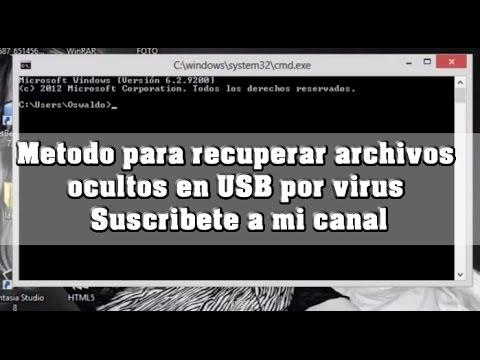 Metodo para recuperar archivos ocultos en USB por virus