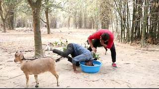 Best Laugh????????Entertainmet Videos 2019 Episode -39 || Bindas fun ||